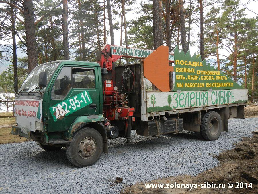 Наша машина для посадки крупномерных деревьев